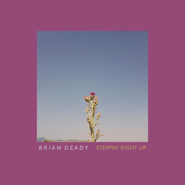 Brian Deady - Steppin' Right Up