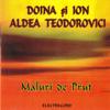 Ion Aldea Teodorovici - Focul Din Vatră artwork