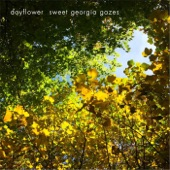 Dayflower - Sweet Georgia Gazes