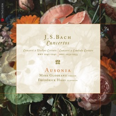 Concerto pour violon in E Major, BWV 1042: I. Allegro