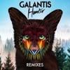 Hunter (Remixes) - EP ジャケット写真