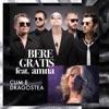 Cum E Dragostea (feat. Amna) - Single, Bere Gratis