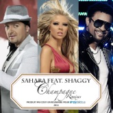 Champagne (feat. Shaggy) [Remixes]