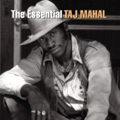 Taj Mahal - When I Feel the Sea Beneath My Soul
