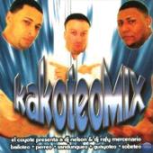 En La Disco Bailoteo - DJ Nelson & Dj Rafy Mercenario