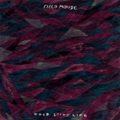 Field Mouse - Two Ships