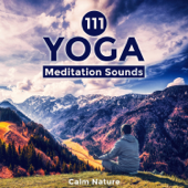 111 Yoga Meditation Sounds - Calm Nature, Healing Instrumental Songs, New Age Relaxation, Zen Music