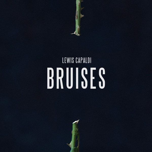 Cover art for Bruises