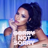 Sorry Not Sorry - Single
