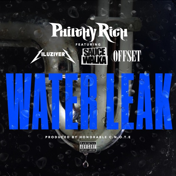Water Leak (feat. Lil Uzi Vert, Sauce Walka & Offset) - Single