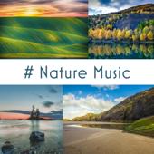 # Nature Music: 50 Tracks of Relaxing Nature Ambient, Meditation, Sleep & Wellness