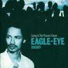 Eagle-Eye Cherry - She Didn't Believe artwork