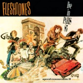 The Fleshtones - B.Y.O.B.