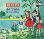 Eels - The Sound of Fear