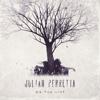 On the Line - Julian Perretta mp3