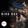 Josh Malerman - Bird Box