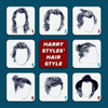 Harry Styles' Hair Style - Emerson Niceuns