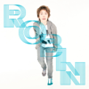 Robin - Frontside Ollie artwork