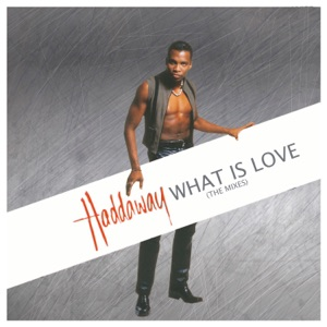 What Is Love (The Mixes)