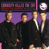 Curiosity Killed the Cat - Down To Earth (Single Version) artwork