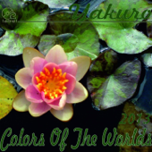 Colors of the Worlds, Pt. 1