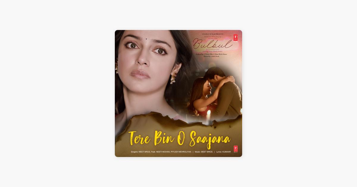 tere bin o sajana hd video song download