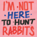 Various Artists - I'm Not Here To Hunt Rabbits
