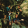 Creedence Clearwater Revival Keep On Chooglin' - Creedence Clearwater Revival
