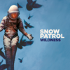 Snow Patrol - Wildness  artwork