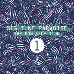 Big Tune Paradise - The EDM Selection, Vol. 1