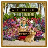 Wild Thoughts (Bee's Knees Dance Remix) [feat. Rihanna & Bryson Tiller] - Single