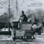 Steely Dan - Any Major Dude Will Tell You