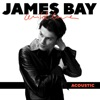 Wild Love (Acoustic) - Single, James Bay