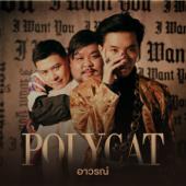 อาวรณ์ - Polycat