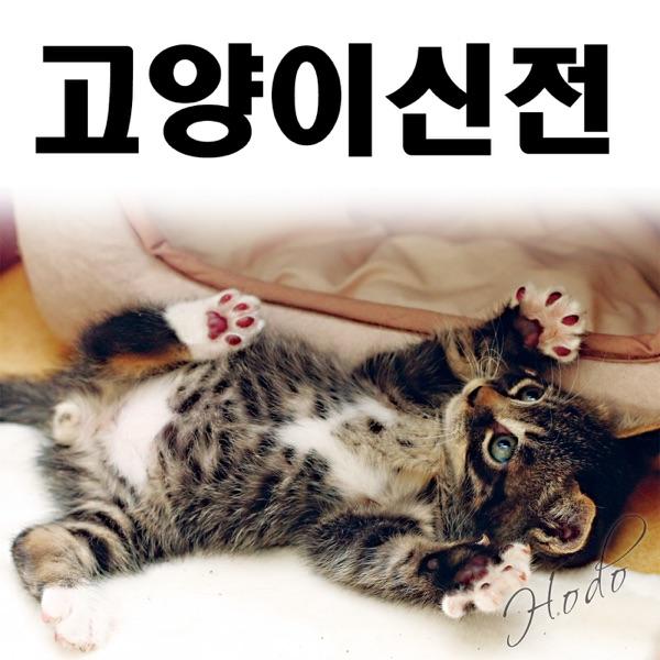 고양이신전
