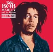 Bob Marley & The Wailers - Trouble