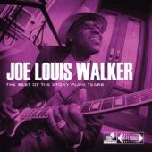 Joe Louis Walker - Hustlin'