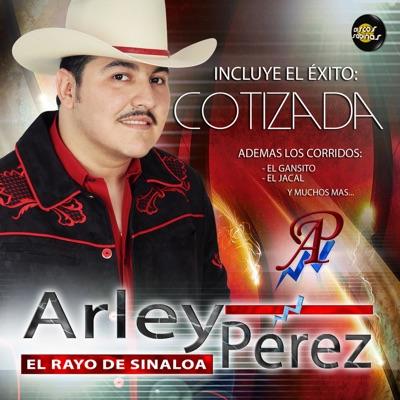 Cotizada - Arley Perez