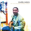 Rollin' Stone: The Golden Anniversary Collection, Muddy Waters