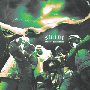 SWIDT - No Emotions in the Wild
