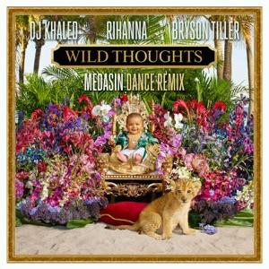Wild Thoughts (feat. Rihanna & Bryson Tiller) [Medasin Dance Remix] - Single Mp3 Download