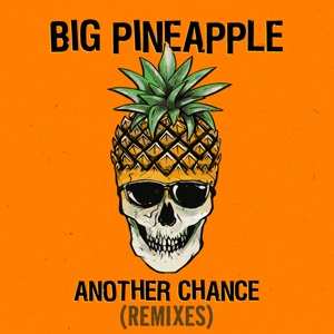 Another Chance (Remixes) - Single Mp3 Download