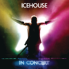 Icehouse In Concert - ICEHOUSE