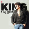 King Nagarjuna Hit Songs