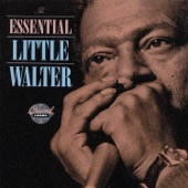 Little Walter - It's Too Late Brother