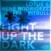 Light Up the Dark (feat. Pitbull) [Remixes] - EP