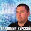 Vladimir Kurskiy - Остыла душа artwork