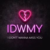 "Idwmy ""I Don't Wanna Miss You"" - Single"