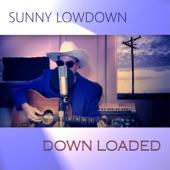 Sunny Lowdown - Down Baby