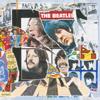 The Beatles - Because (A Cappella) bild